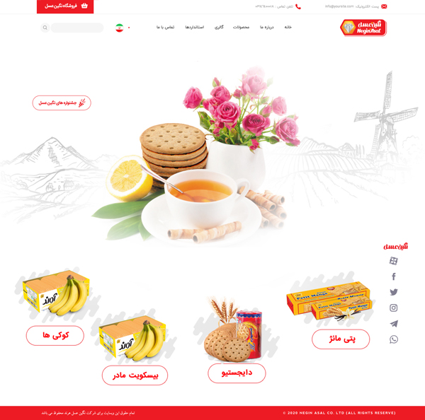 neginasal-webdesign